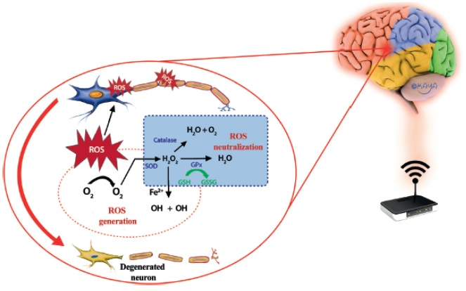 nevron-skaderfraEMF